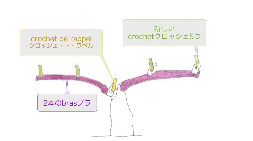 完成したcordon doubleコルドン・ドゥーブルの図