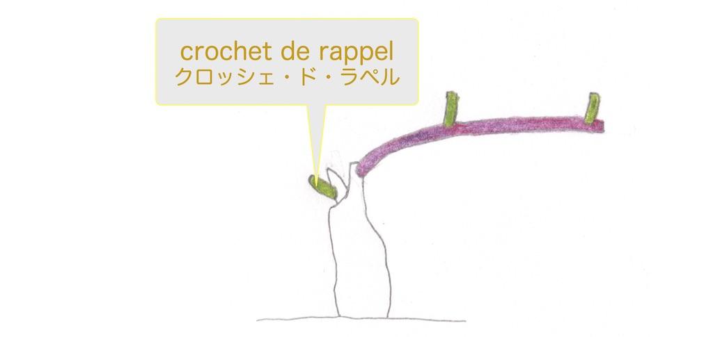 crochet de rappelクロッシェ・ド・ラペルは幹の上にあるクロッシェのことだ