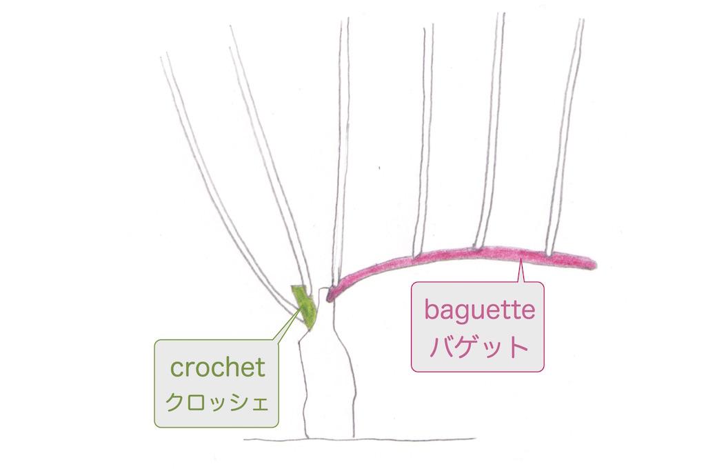 剪定前のguyot simpleギュイヨ・サンプルの図。