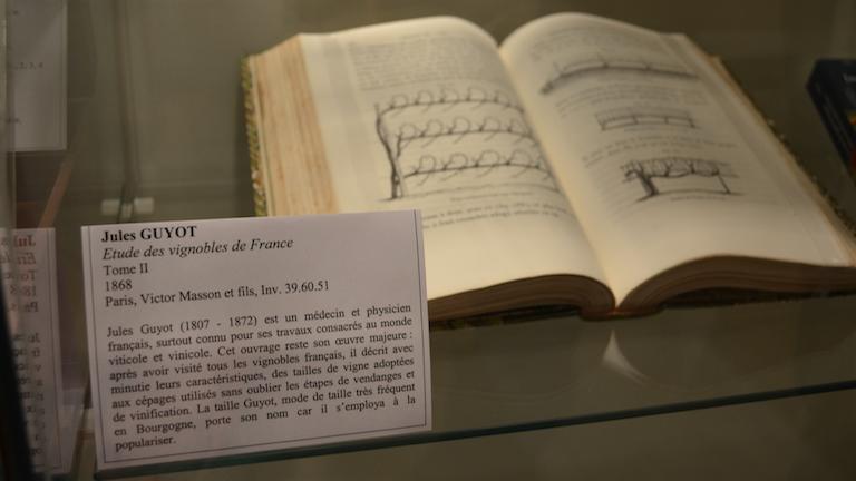 Jules GUYOTジュール・ギュイヨ博士の1868年に発行されたフランスのぶどう畑を研究に関する著書