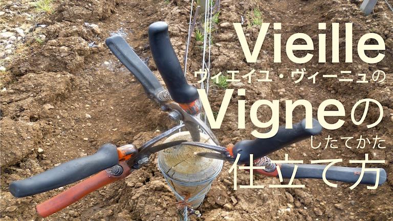 VieilleVigneの仕立て方